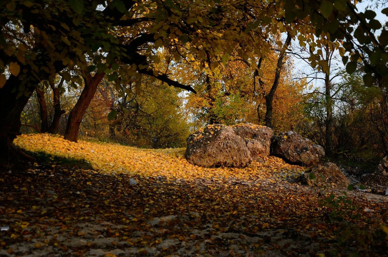 Труханов-остров-осенью
